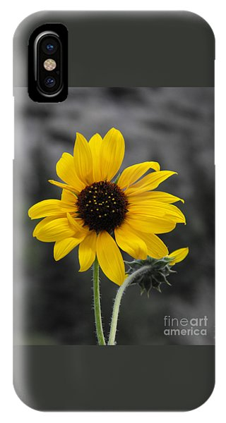 Sunflower On Gray IPhone Case