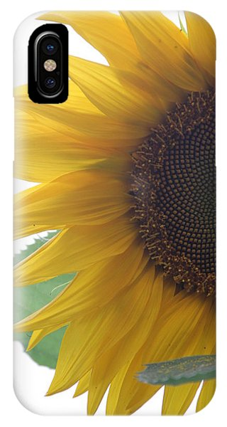 Sunflower Phone Case by Rebecca Powers