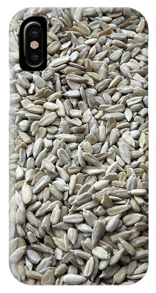 Sunflower Seeds iPhone Case - Sunflower Seeds by Claudia Dulak / Science Photo Library