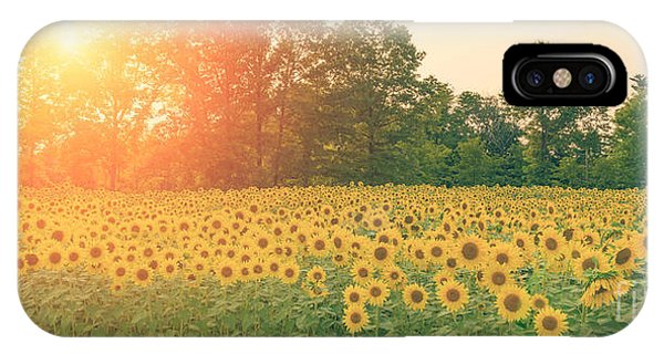 Michael iPhone Case - Sunflower Sunset by Michael Ver Sprill