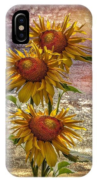 Golden Gardens iPhone Case - Sunflower Trio by Debra and Dave Vanderlaan
