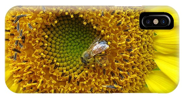 Sunflower Visitor Series 2 IPhone Case