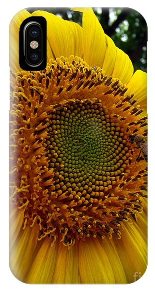 Sunflower Visitor Series 6 IPhone Case