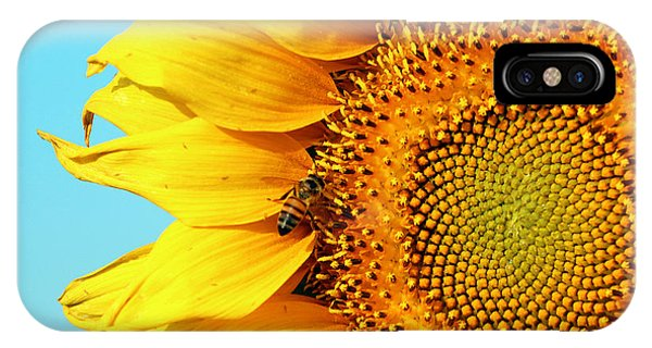 Sunflower With Bee - Photo IPhone Case