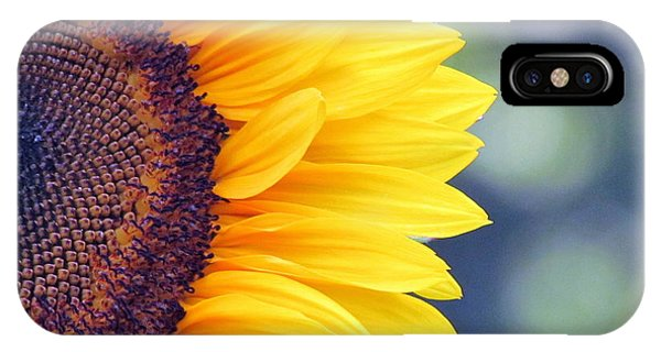 Sunflower With Bokeh IPhone Case