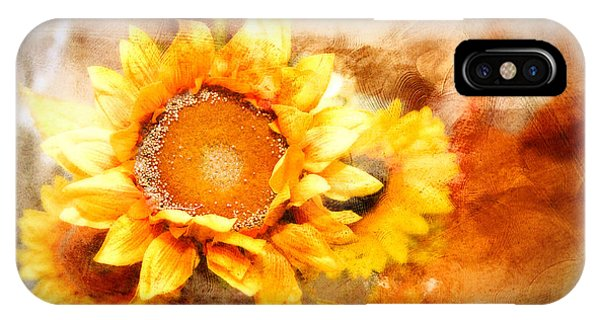 Sunflowers Aglow IPhone Case