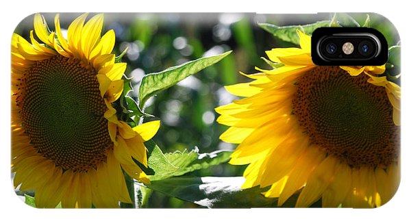 Sunflowers Phone Case by Manda Renee