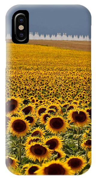 Sunflowers And Airports IPhone Case