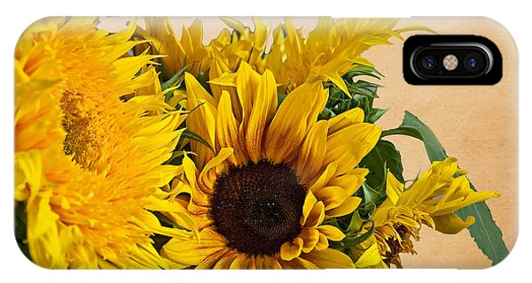 Sunflowers On Old Paper Background Art Prints IPhone Case
