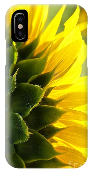 Sunkissed IPhone Case