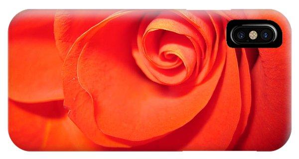 Sunkissed Orange Rose 9 IPhone Case