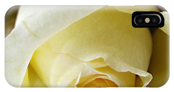 Sunkissed Yellow Rose IPhone Case