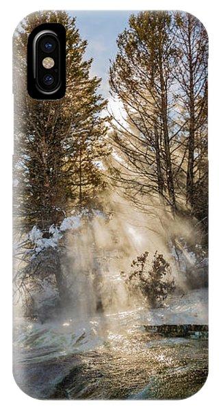 Sunlight Through The Trees IPhone Case