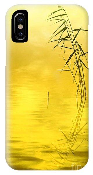 Salo iPhone Case - Sunlight by Veikko Suikkanen
