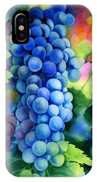 Grape iPhone X Case - Sunlit Grapes by Hailey E Herrera