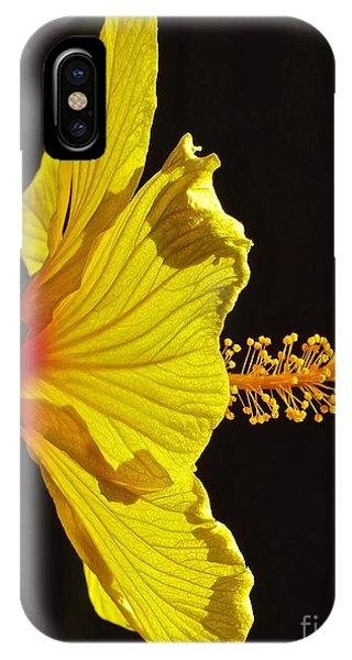 Sunlit Hibiscus IPhone Case