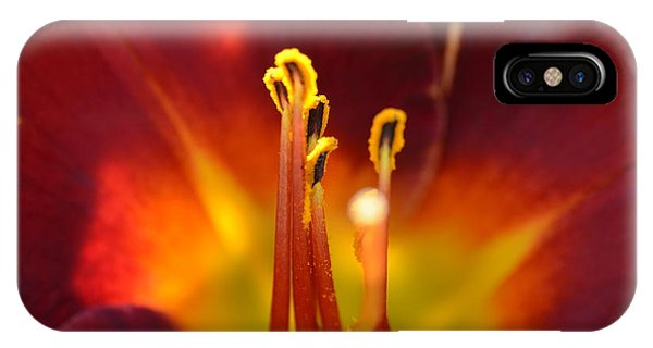 Sunlit Lily IPhone Case