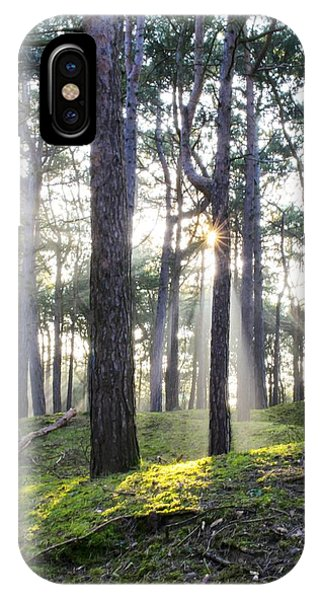 Sunlit Trees IPhone Case