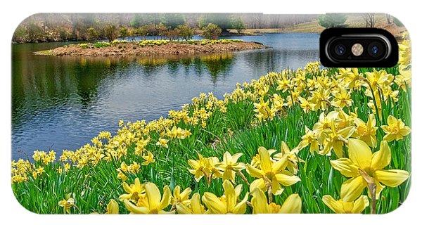 Sunny Daffodil IPhone Case