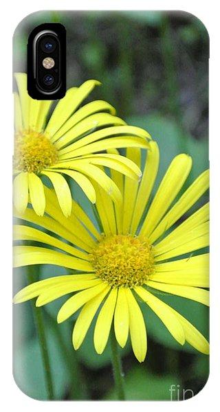 Sunny Yellow 2 IPhone Case