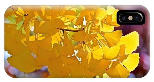 Sunny Yellow Ginkgo IPhone Case