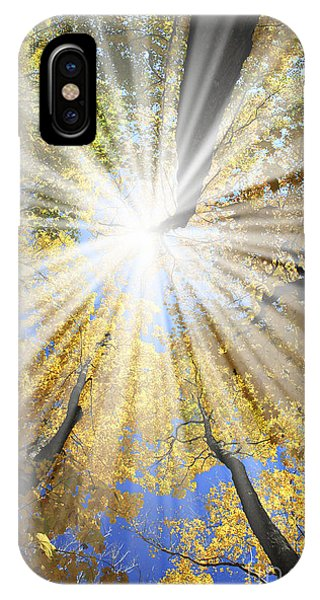 Sunny iPhone Case - Sunrays In The Forest by Elena Elisseeva