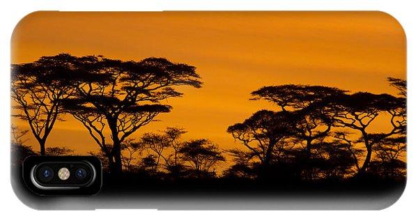 Sunrise Acacias  IPhone Case