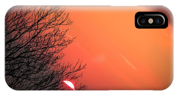 Sunrise And Hibernating Tree IPhone Case