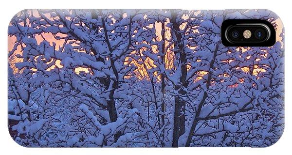 Sunrise Branches IPhone Case