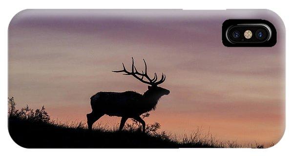 Sunrise Bull IPhone Case