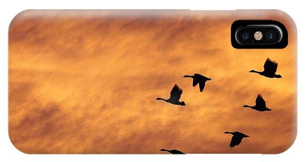 Sunrise Flight 2 IPhone Case