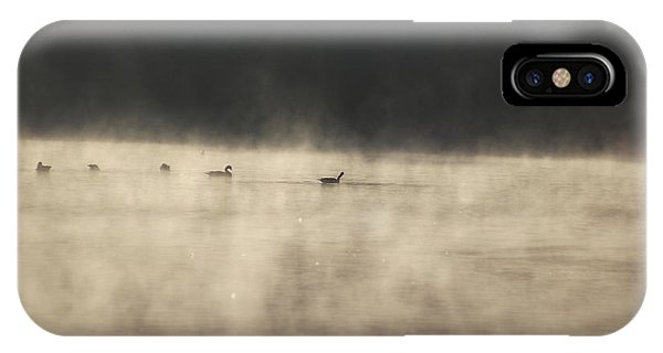 Sunrise Geese IPhone Case