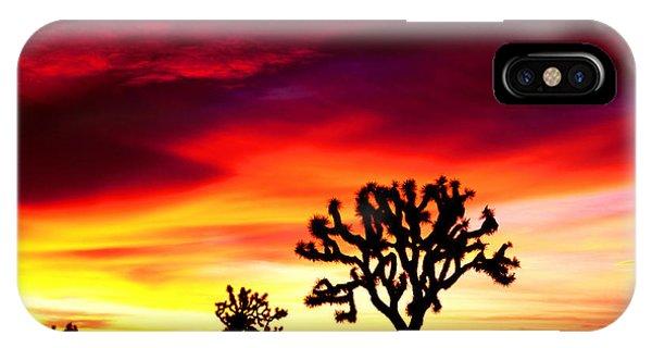 Sunrise In Joshua Tree Nat'l Park IPhone Case