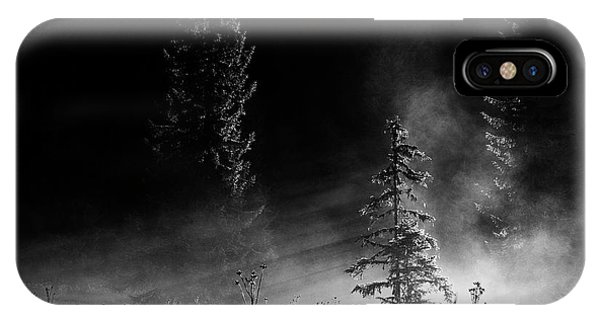 Fir Trees iPhone Case - Sunrise In The Forest by Julien Oncete