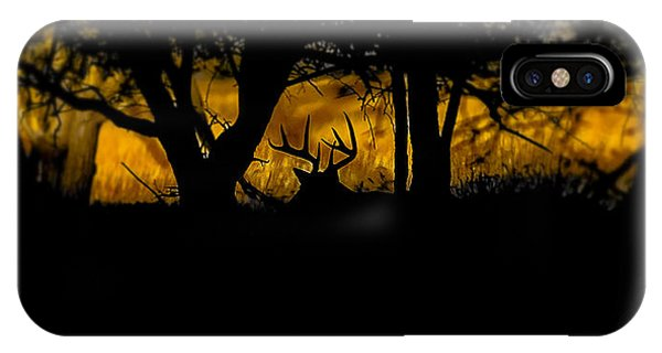 Sunrise In The Timber IPhone Case