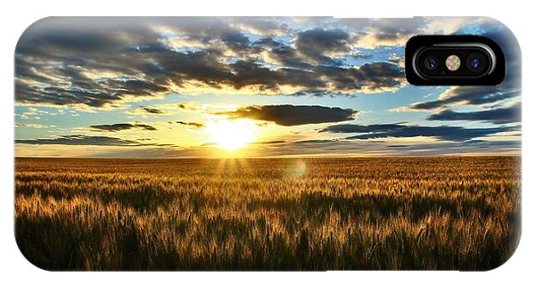 Sunrise On The Wheat Field IPhone Case