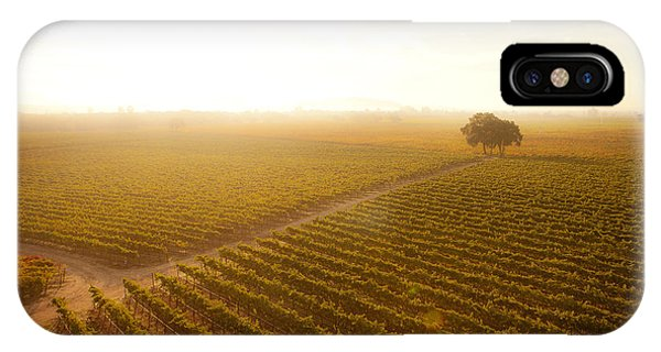 Sunrise Over The Vineyard IPhone Case