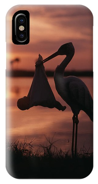 Sunrise Silhouette Of Stork Carrying IPhone Case