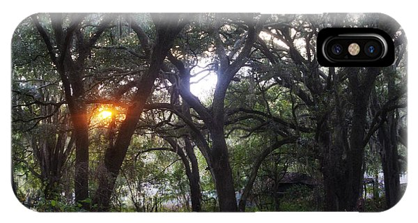 Sunrise Through The Oaks IPhone Case