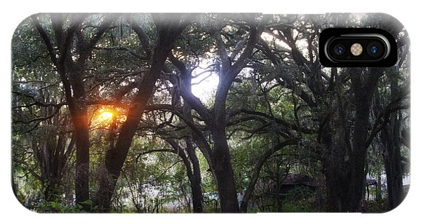 Sunrise Through The Oaks IPhone Case