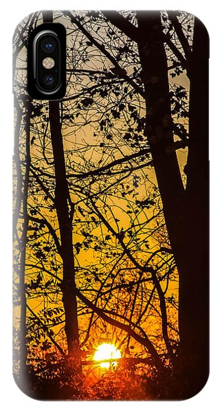 Sunrise Through Trees IPhone Case
