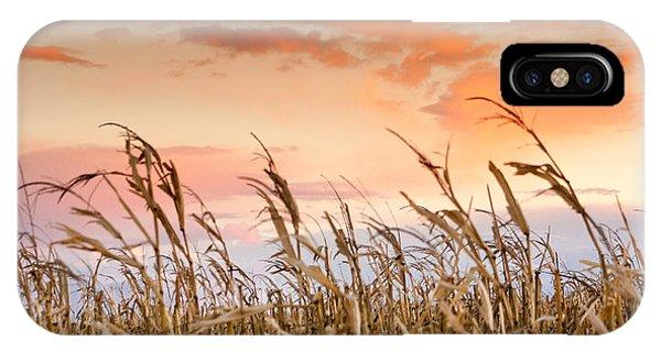 Sunset Against The Cornstalks IPhone Case