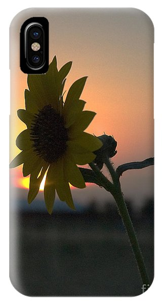 IPhone Case featuring the photograph Sunset And Sunflower by Mae Wertz