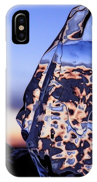 Sunset Fish IPhone Case