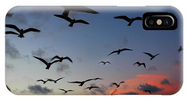 IPhone Case featuring the photograph Sunset Flight by Candice Trimble