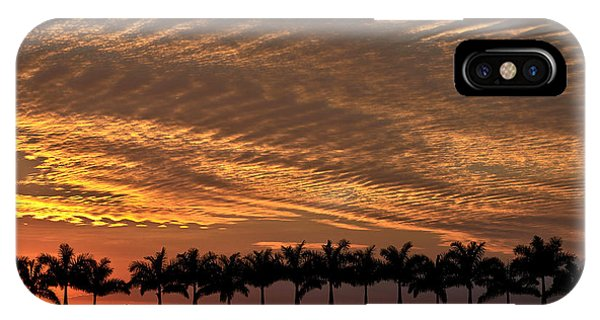 Sunset Florida IPhone Case