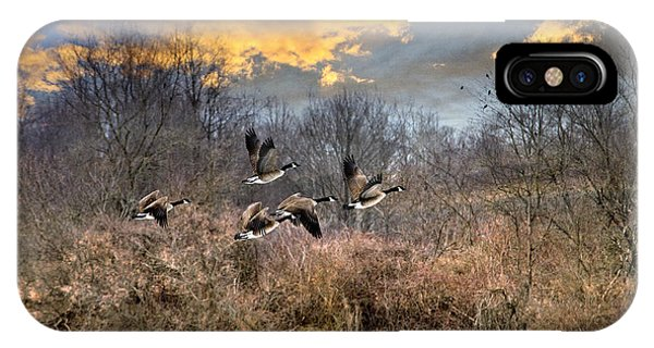 Canada Goose iPhone Case - Sunset Geese by Christina Rollo