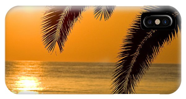 Sunset Golden Color With Palm IPhone Case