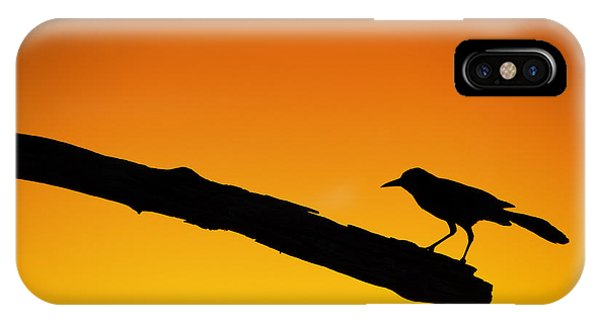 Sunset Grackle Silhouette IPhone Case