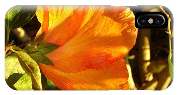 Sunset Hibiscus IPhone Case
